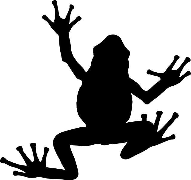 silhouette-of-frog
